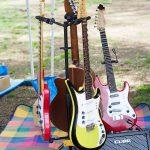 ベトナミーズギター るとる